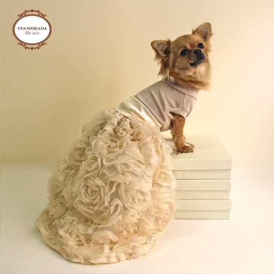 vestiti per cani abbigliamento per cani : Blog italiano di moda: Vestiti da sposa per cani