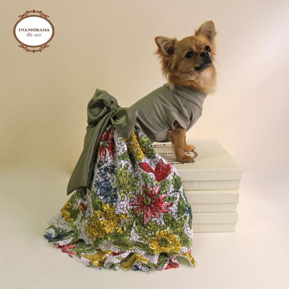 Abbigliamento Per Cani Di Piccola Taglia Chichuahua Boutique Pictures ...